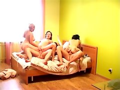 This is How a Common Stud Party Can End!video