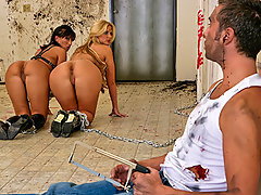 Phoenix and Ricki both woke up chained side to side to the wall of a filthy bathroom. None of them knows how they got to this, nor what might await them. By following some left out clues, they realize that they're the latest victims of a big butt maniac who makes his own amusements by putting big butts in eery situations. If they want to make it, they will need to get their asses destroyed by Keiran's big cock!video