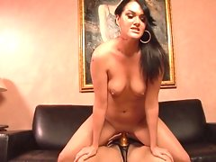 cougars and cubs scene 3video